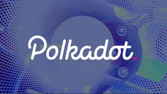 The most used wallets of polkadot