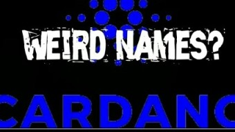 (IJCH) The Weird Names In The Cardano Project - What's Up With That? (Cool Anectdotes)