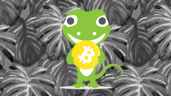 Collecting Coingecko candies?