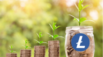 Is the Litecoin Mining Community ready to fund Litecoin Further development?