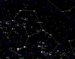 Stellar Potential