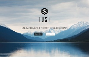 What is IOST ?