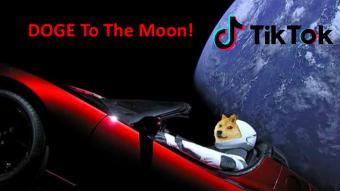This time TikTok pumps DOGE