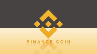 Binance Coin (BNB) Review