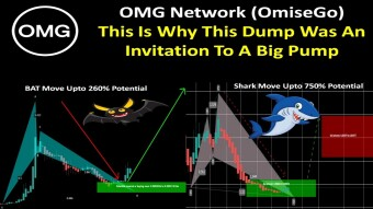 OMG Network (OmiseGo) | This Is Why This Dump Was An Invitation To A Big Pump