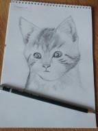 Kara Kalem- Kedi Çizimi/Black Pen - Cat Drawing