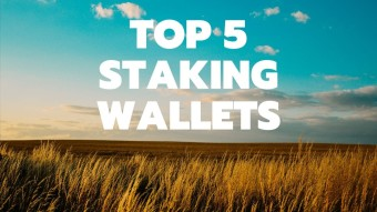 TOP 5 Staking Wallets To Grow Your Assets 2020