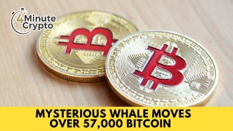 Mysterious Whale Moves Over 57,000 Bitcoin #439
