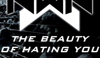 The Beauty Of Hating You