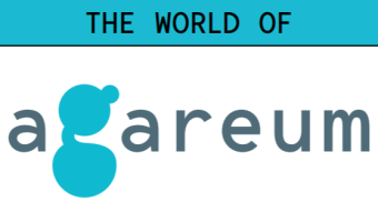 Introducing agareum - A Cryptocurrency Gamedrop Platform. Earn Coins by Playing Games!