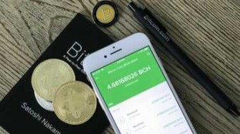 Slovenia Has More Physical Stores Accepting Bitcoin Cash (BCH) in the World.