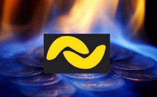 Burning Of 300 Million Banano (BAN): What's In It For Us Burning Coins?
