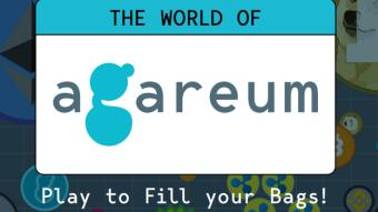 Agareum - Game Online Based Blockchain Platform!