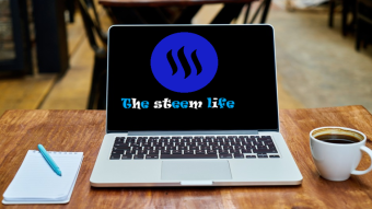 The Steem Life: Terms you should know