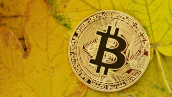 Bitcoin and Altcoins Fall on Bloody Tuesday- What is Happening?