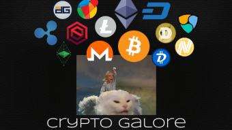 Crypto Galore |How to choose which cryptocurrency to invest in?