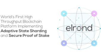What is Elrond network?