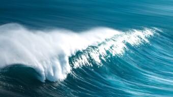 Riding the TEZOs Wave