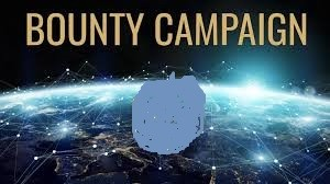 How to make the best of bounty campaign articles