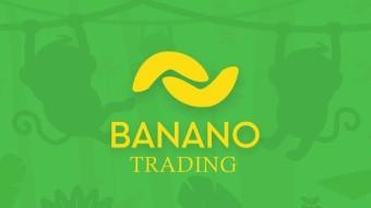 Trading (tutorial para principiantes)