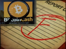 Roger Ver misstakenly shows off big security flaw in BCH when trying to brag of it's speed (0 confirmation transactions )