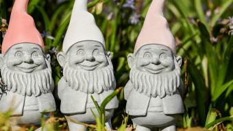 Underpants gnomes: understanding dApps