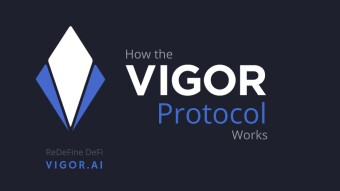 The Vigor Protocol: The Basics