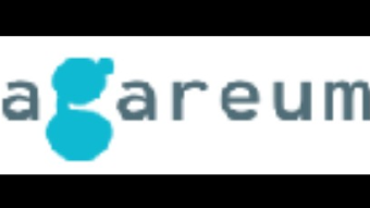 Agareum- Feel The Fun, Fill The Bags. World's First Gamedrop Platform