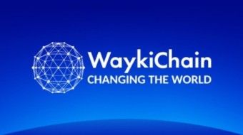 Is WaykiChain (WICC) A Good Investment? In-depth Analysis and Near to Longer-Term Expectations