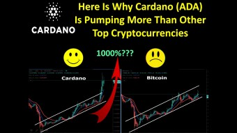 Here Is Why Cardano (ADA) Is Pumping More Than Other Top Cryptocurrencies