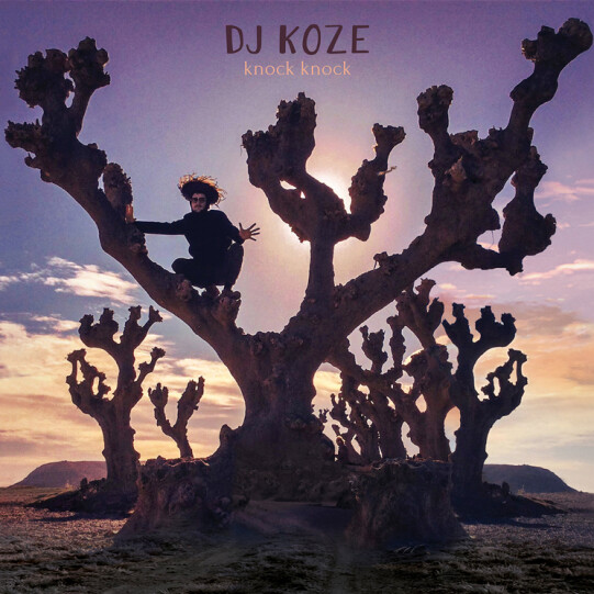 Dj Koze - Knock Knock, album art.