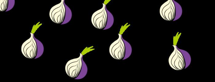 Tor onions stock - dogsbody technology