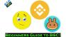 Beginners Guide to Binance Smart Chain!