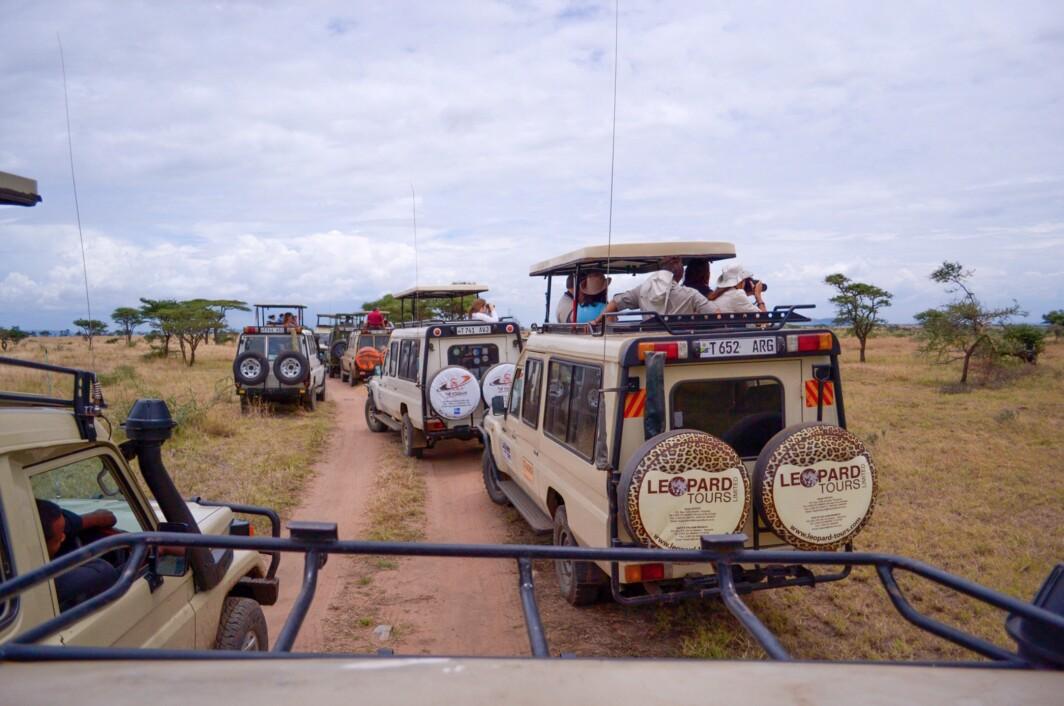 Safari tourists in Tanzania