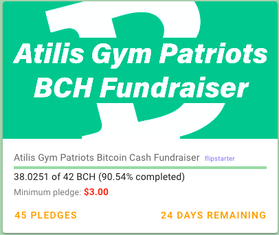 Bitcoin Cash Supporting Causes
