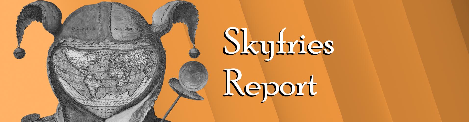Skyfries Report