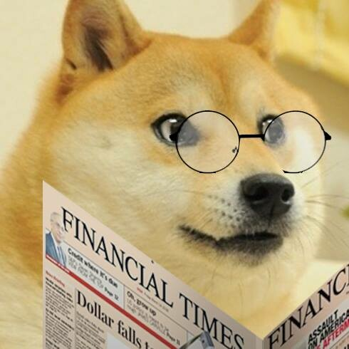 image of doge reading financial times