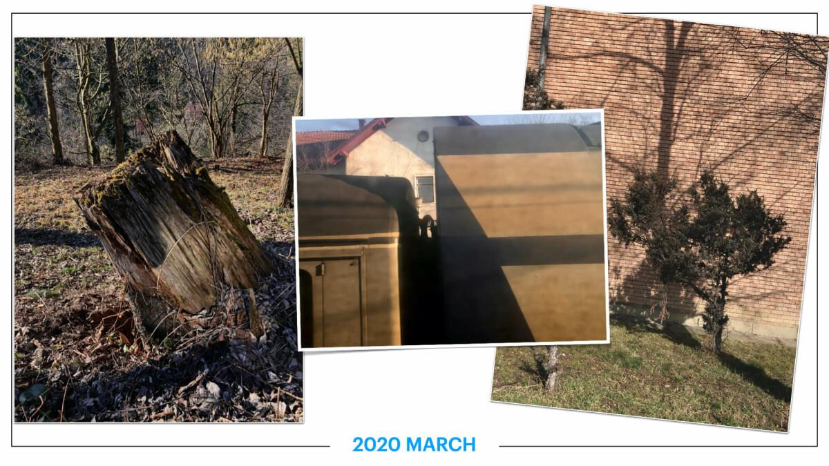 szbarnaus_2020_march