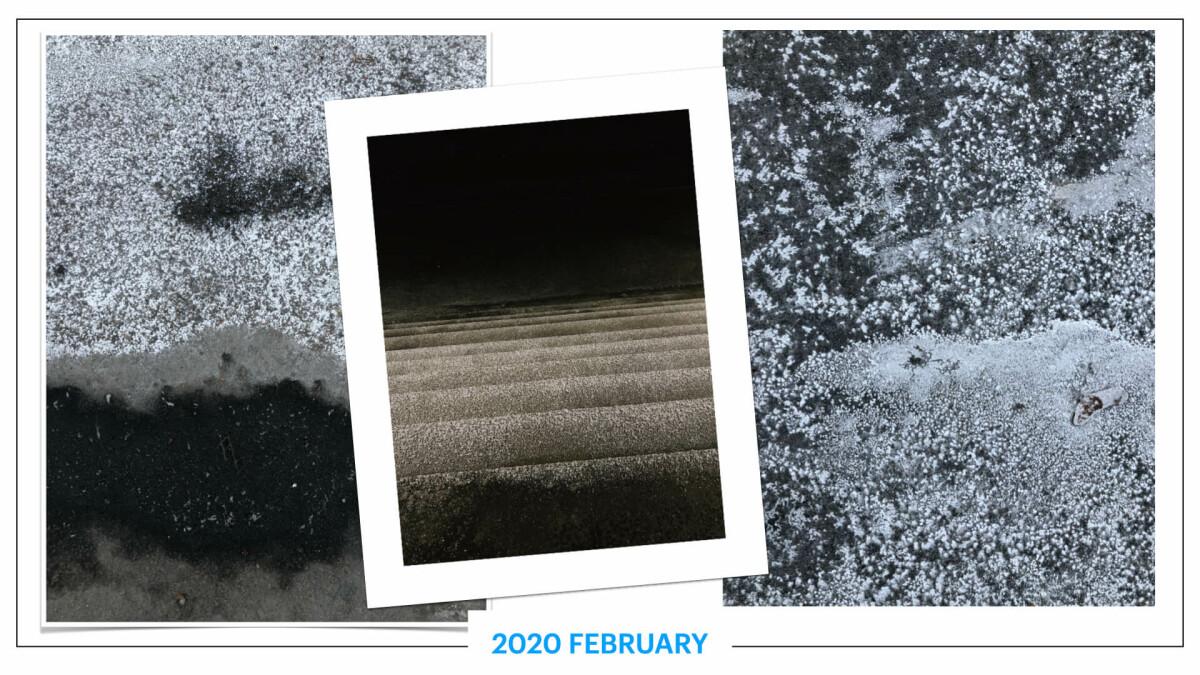 szbarnaus_2020_february