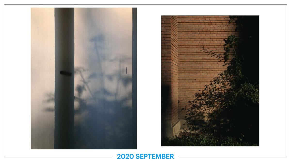 szbarnaus_2020_september