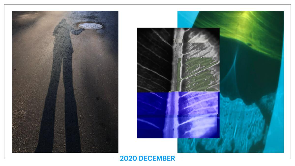 szbarnaus_2020_december