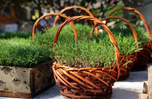 """The Unique Traditions of Persian New Year """"Nowruz"""""""