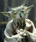 Owl Yoda