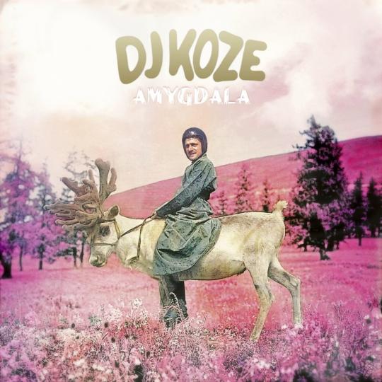 DjKoze - Amygdala, album art.