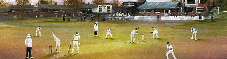 cricket guide