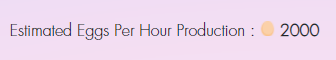 2000 Eggs Per Hour