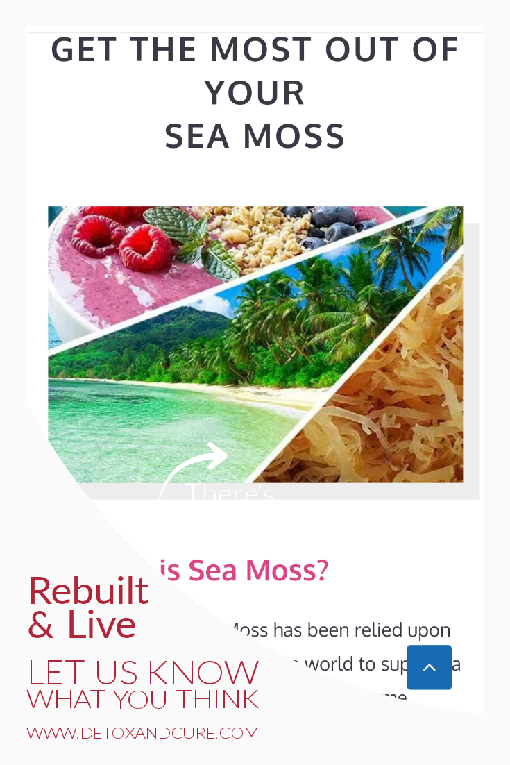 Sea moss website build to showcase what visitors want to see