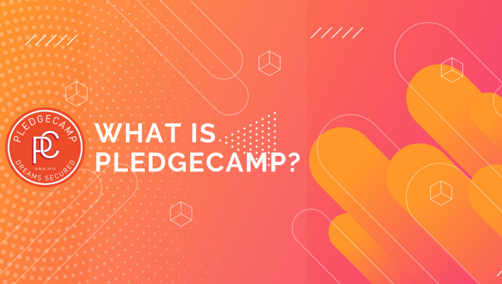 What is Pledgecamp?