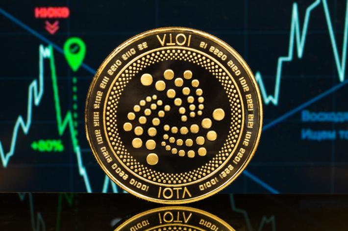 iota crypto future