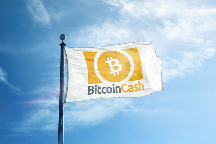 why bitcoin cash bch exist